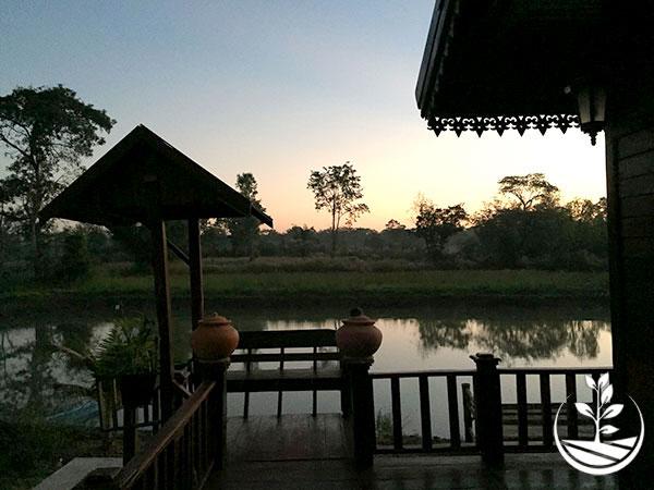 Wwoofing en thailande, faire du volontariat en thailande, faire du bénévolat en thailande, woofing thailande, thai wwoof, excursion en issan, découvrir l'isan