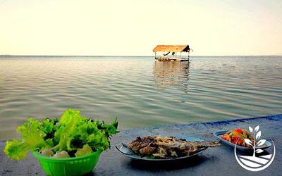 Wwoofing en thailande, faire du volontariat en thailande, faire du bénévolat en thailande, woofing thailande, thai wwoof, excursion en issan, guide à vientiane au Laos, manger sur l'eau, maison flottante