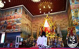 thai wwoofing, wwoofing en thailande, woofing, woofing en thailande, wwoof Thaïlande, écotourisme, eco-tourisme, permaculture, culture tropicale, tourisme vert; permaculture, bénévolat en thailande, guide francophone