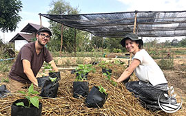 thai wwoofing, wwoofing en thailande, woofing, woofing en thailande, wwoof Thaïlande, écotourisme, eco-tourisme, permaculture, culture tropicale, tourisme vert, permaculture, bénévolat