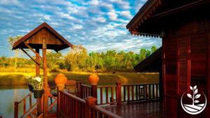 thai wwoofing, wwoofing en thailande, woofing, woofing en thailande, wwoof Thaïlande, écotourisme, eco-tourisme, permaculture, culture tropicale, tourisme vert; permaculture, bénévolat en thailande, siam, pays du sourire
