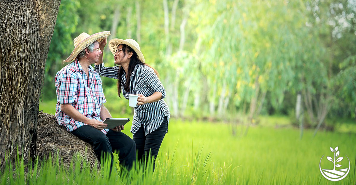 wwoofing en thailande, vivre en thailande, retraite en thailande
