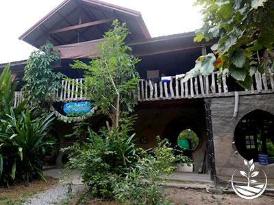 woofing, construire en thailande avec des briques de terre, permaculture, stage