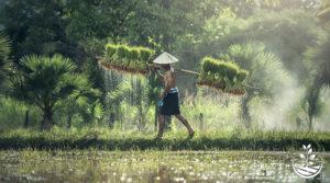 Ecotourisme, un merveilleux témoignage venant du coeur