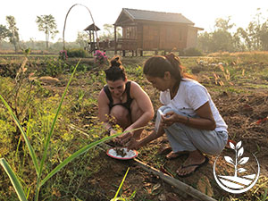 le bio, permaculture, stage en thailande, woofing