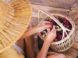 Manu, woofing en Thaïlande, stage de permaculture, agriculture bio, vivre en Thaïlande