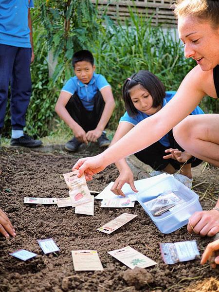 woofing en Thaïlande, stage de permaculture, agriculture bio, vivre en Thaïlande