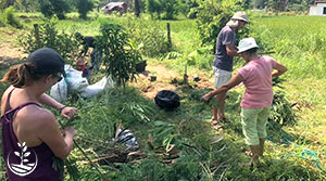 agroforesterie, stage de permaculture, woofing thailande