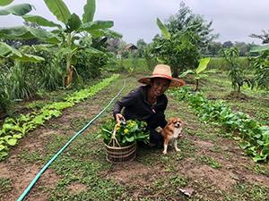 manger sainement en Thaïlande