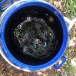 Élaboration du thé de compost