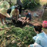 Composting and natural farming